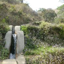 Nähe Rishikesh