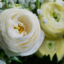 DA3 studio fiori per matrimonio Ranuncoli e Gypsophila