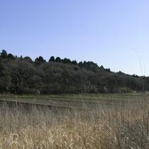 里山と水田