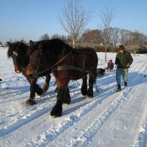 Schlittentour per Pferd