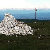 Cairn de KERNH  franco-suisse. Vive les pigeons voyageurs
