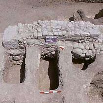 Tombe a fossa nella chiesa B [dal sito web dell'area di archeologia del Dipartimento di Scienze Umane dell'Università di Foggia; www.archeologia.unifg.it]