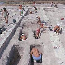 Archeologi al lavoro nelle tombe della chiesa B [dal sito web dell'area di archeologia del Dipartimento di Scienze Umane dell'Università di Foggia; www.archeologia.unifg.it]