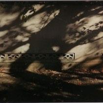 「影の屈折」・藤枝一子