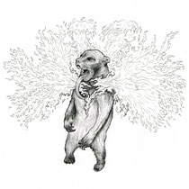 Personal ink drawing of the sun bear.