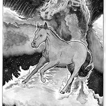"""Finn the Space Pony. 11x14"""" Commission."""