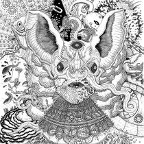 Album Back Cover for 'Bunnies; Transportation To Mind Transformation' on Vinyl.