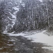 Burgund Waldweg | 2018 | Bleistift auf Karton | 50 x 70 cm