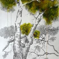 Melaten Platane | 2020 | Tusche / Ölfarbe auf Papier | 76 x 56 cm
