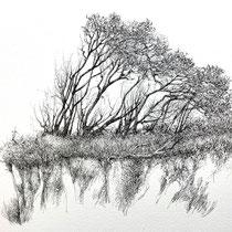 Darß Weststrand II | 2021 | Tusche auf Papier | 30 x 40 cm
