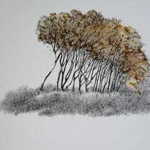 Darß Weststrand | 2021 | Tusche / Aquarell auf Papier | 30 x 40 cm