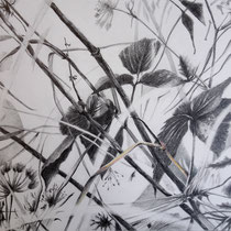 Wiesenrand | 2020 | Bleistift / Farbstift auf Papier auf Holz | 20 x 25 cm
