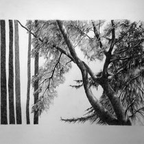 Park 2 | 2020 | Bleistift auf Papier | 40 x 50 cm