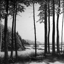 Eifel  Arft | 2017 | Bleistift auf Karton | 70 x 100 cm