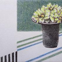 Vase mit gelben Blumen | 2020 | Bleistift / Farbstift auf Papier auf Holz | 14 x 20 cm