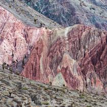 Cerro de los siete colores, Purmamarca. Fue originado alrededor de setenta y cinco millones de años atrás. Está conformado por sedimentos marinos, lacustres y fluviales que fueron depositándose en la zona durante siglos.
