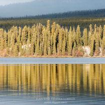 Reflejos en Squanga Lake