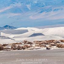 Campo de piedra pomez, Antofagasta de la sierra, Catamarca.