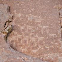 Petroglifos de los primeros habitantes de la zona, representando vicuñas o similares.