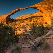 Landscape Arch, al amanecer