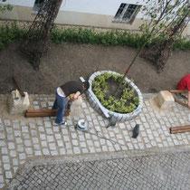 Fertigstellung des Rasenpflasters und Aufstellen der Ruhebänke