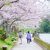 散歩(南郷公園)