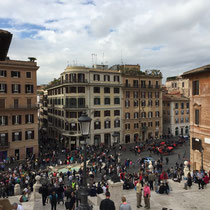 View from the Spanish Steps.  Rooftop and balcony greenery is all I see.