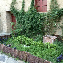 Herb garden at the Tuscan castle.