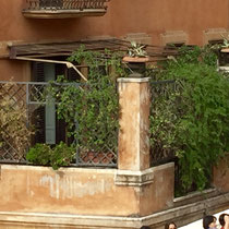 Another beautiful balcony in Rome.