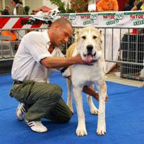 Expo Internazionale di Roma 2007 - Melgun consegue il Migliore di Razza BOB dalla classe Giovani - Giudice Mr. Evgeny Kuplyauskas (RU)