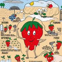 """Erklärposter """"Darum sind Erdbeeren aus der Region ihr Geld wert..."""""""