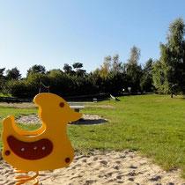Unser Tweety auf der Spielwiese © www.zweiseen.de