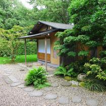 Teegarten im Juli