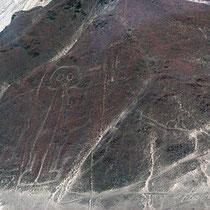 Lignes de Nasca, l'Astronote