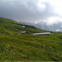 Landschaftspark Binntal Wyssi 28.06.2014