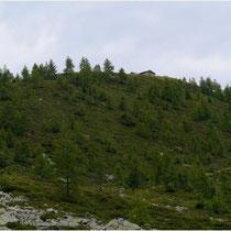 Alphütte Susten-Illhorn 10.08.2014
