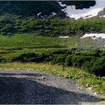 Landschaftspark Binntal Haslesee 28.06.2014