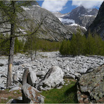 Baltschiedertal 18.05.2014
