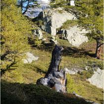 Lötschental  03.10.2011