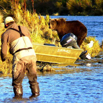 fishing with the bears of Kodiak