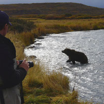 bear visit