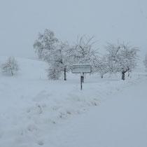 Unser Winter 2021 mit 65 cm Neuschnee im Januar