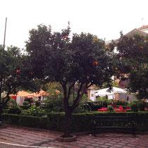 La Plaza de los Naranjos, Marbella