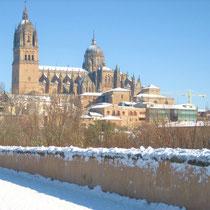 Die Kathedrale von Salamanca im Winter