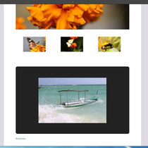 Slideshow im Layout eingebettet