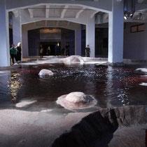 Le silence des sirènes - Biennale d'Art Contemporain de Lyon  - La Sucrière - Septembre 2011  / Photo : Anik Couble