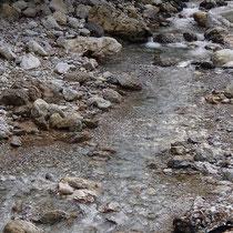 丹生川の清らな流れ