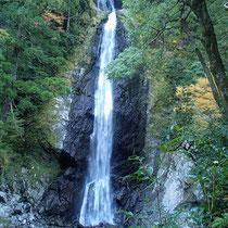 これが「ニコニコ滝」