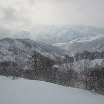 遠くに和泉スキー場が。
