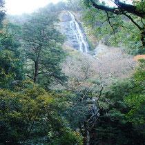 岩壁の上から流れ落ちる「千尋滝」